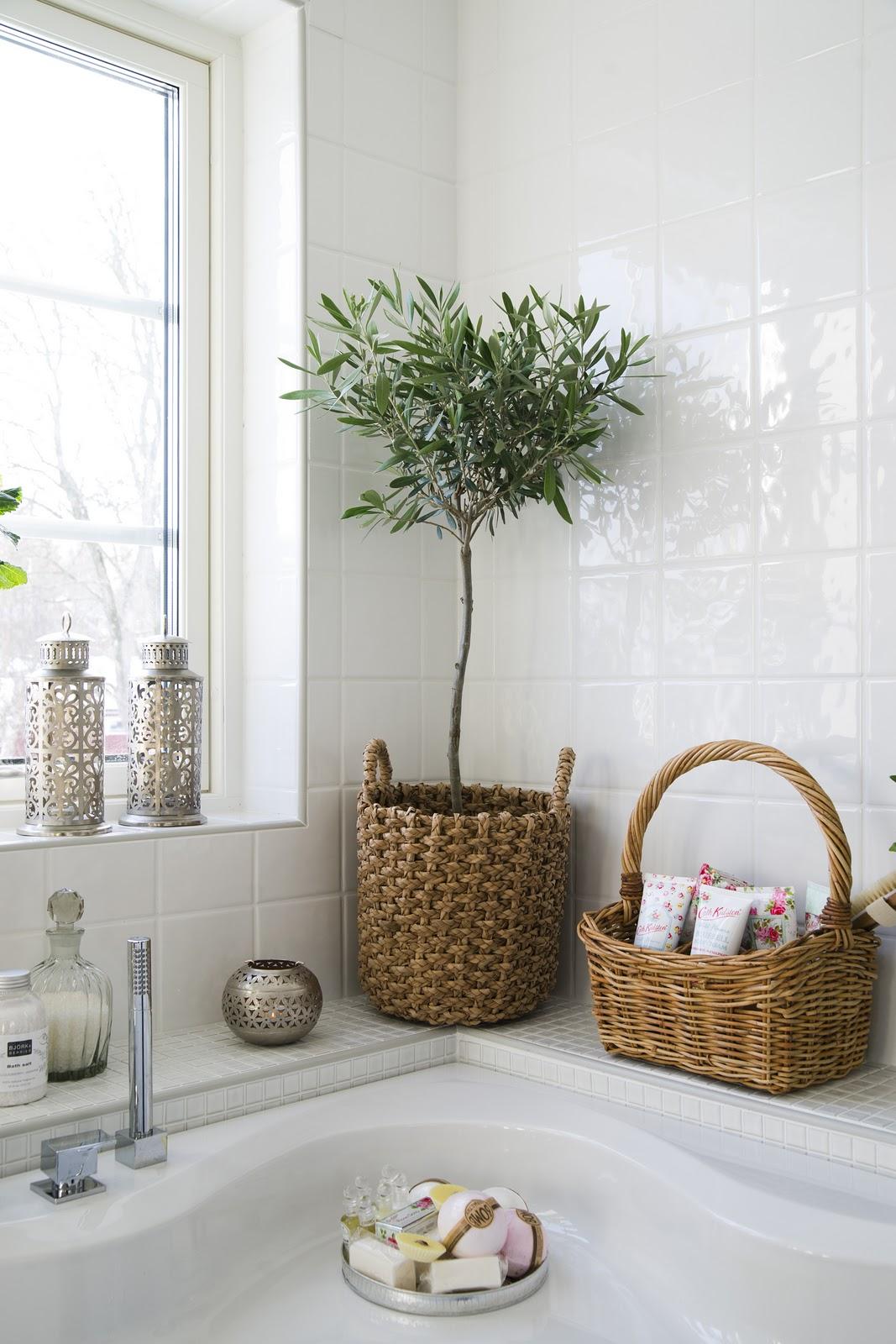 Kan man ha trä i badrum ~ xellen.com